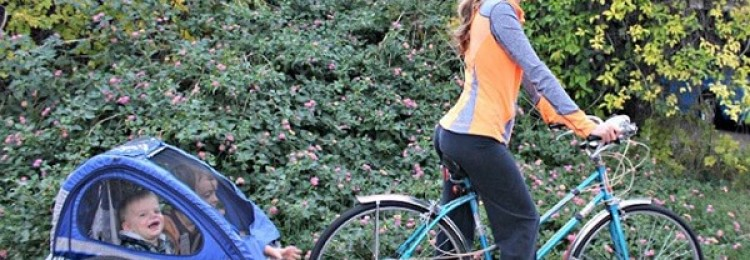 Велоприцеп для детей – особенности и виды