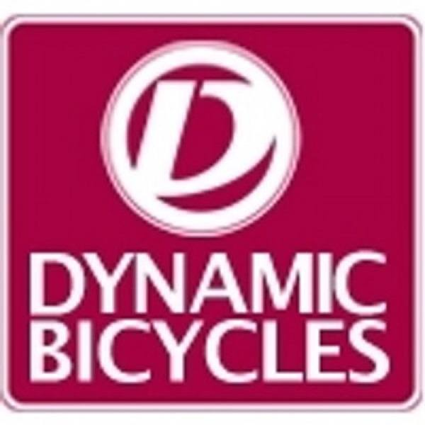 Dynamic Bicycles