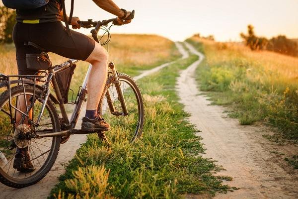 велосипед для леса и бездорожья