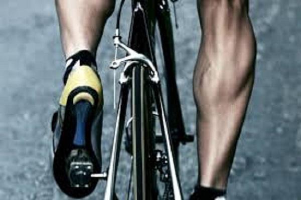 длина ноги велосипедиста