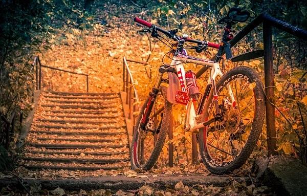 приобретение велосипеда осенью